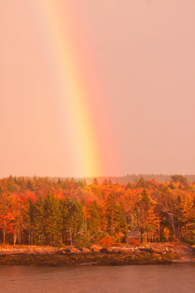 Rainbow with fall foliage, vertical, Totman Cove, Bailey Point, Phippsburg, Maine
