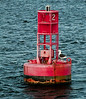 Bell buoy with Black Backed sea gull, red, navigational, marine, nautical, ocean, Atlantic