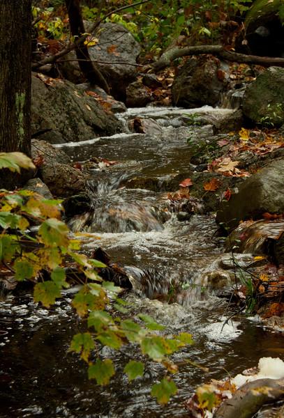 North Creek Phippsburg Maine fall