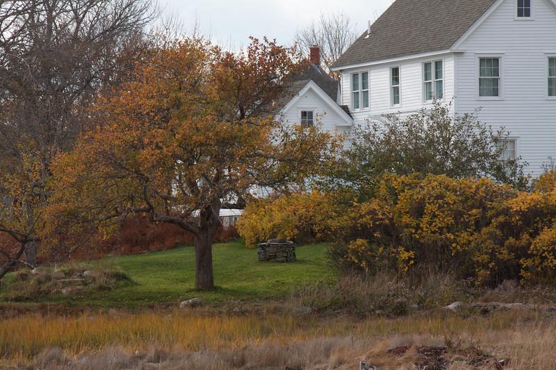 Vinalhaven Island, Maine, antique well head, apple trees, rosa rugosa, fall, autumn