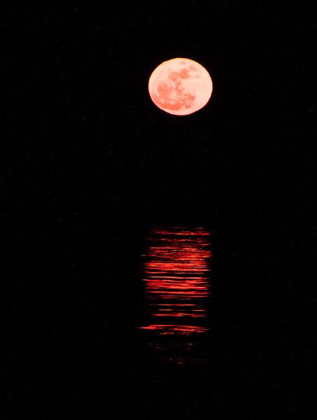 March full moon rising Totman Cove Phippsburg Maine