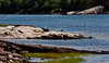 kayaking, Totman Cove, Small Point Harbor, Phippsburg, Maine