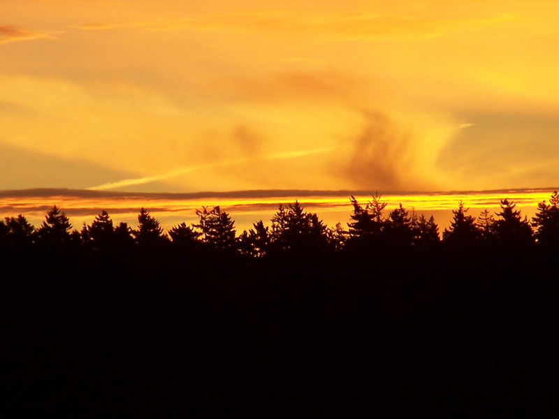 Sunrise, Maine coast