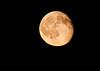 September Full Moon, called the Full Corn Moon or Full Harvest Moon as seen from Phippsburg, Maine September 07, 2009