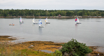 Small Point sailing club regatta in Totman Cove, Phippsburg, Maine, spinnakers up trying to get that last bit of wind! Totman Cove was an unusual tack for this race