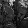 Rocks Monhegan Maine black and white