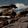 Maine Scenic surf Monhegan