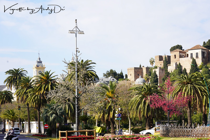 Picturescape of the Alcazaba and Castillo de Gibralfaro from the Plaza Del Marina. These were citadels built as an extension of the Alhambra Palace and fortress in Granada, by the Nasrid Emirate to protect Malaga from incursions!