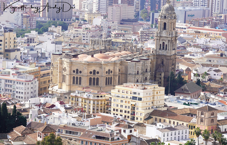 Bird's eye view of the Cathedral of Malaga as seen from the apex of the Castillo de Gibralfaro!