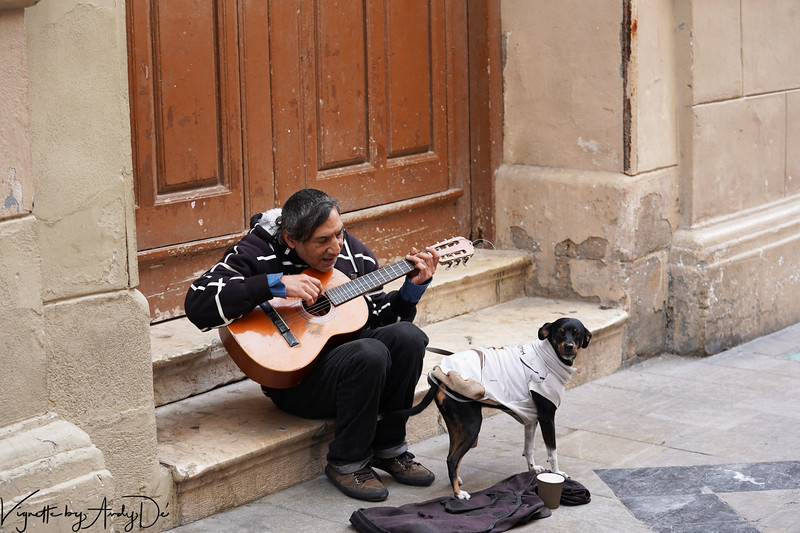 Minstrel with his dog strumming his guitar playing festive tunes for tourists on Christmas! It was heartwarming to see him talking to his pet between songs, since this dog is likely all that he has for family!
