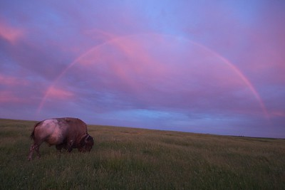 The only way to include a complete rainbow in one frame is to use an extremely wide angle lens, in this case a 10mm (16mm actual) [June; Blue Mounds State Park, Rock County, Minnesota]