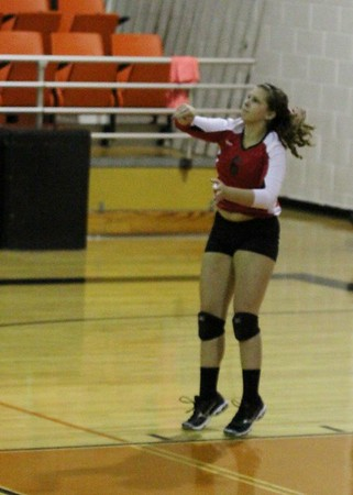 2014 MANSFIELD LADY TIGERS VOLLEYBALL