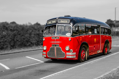 KHA301 Midland Red