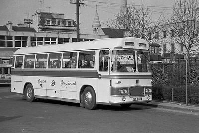 1966 Bristol MW6G with ECW body