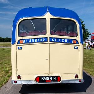 BMS414 Alexander D19