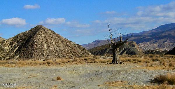desert - 2