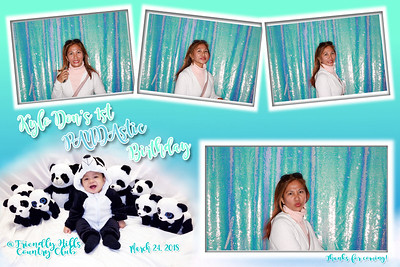 Kylo's 1st Birthday