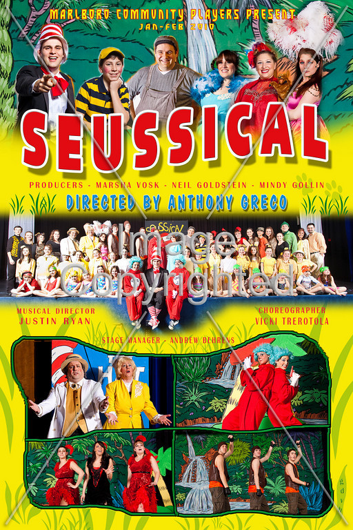 SEUSSICAL POSTER - available as 20x30 - 12x18 - or 8x12.