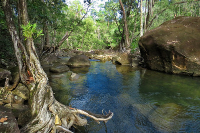 FINCH HATTON CREEK_03