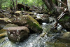 FINCH HATTON CREEK_01