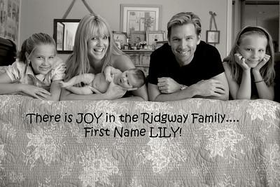 LILY-JOY