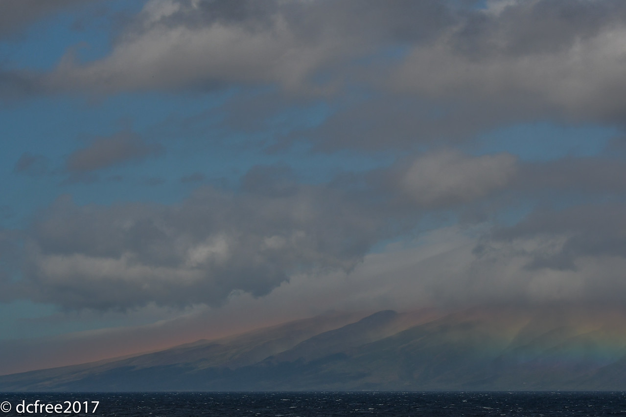 MOLOKAI  MORNING GLOW