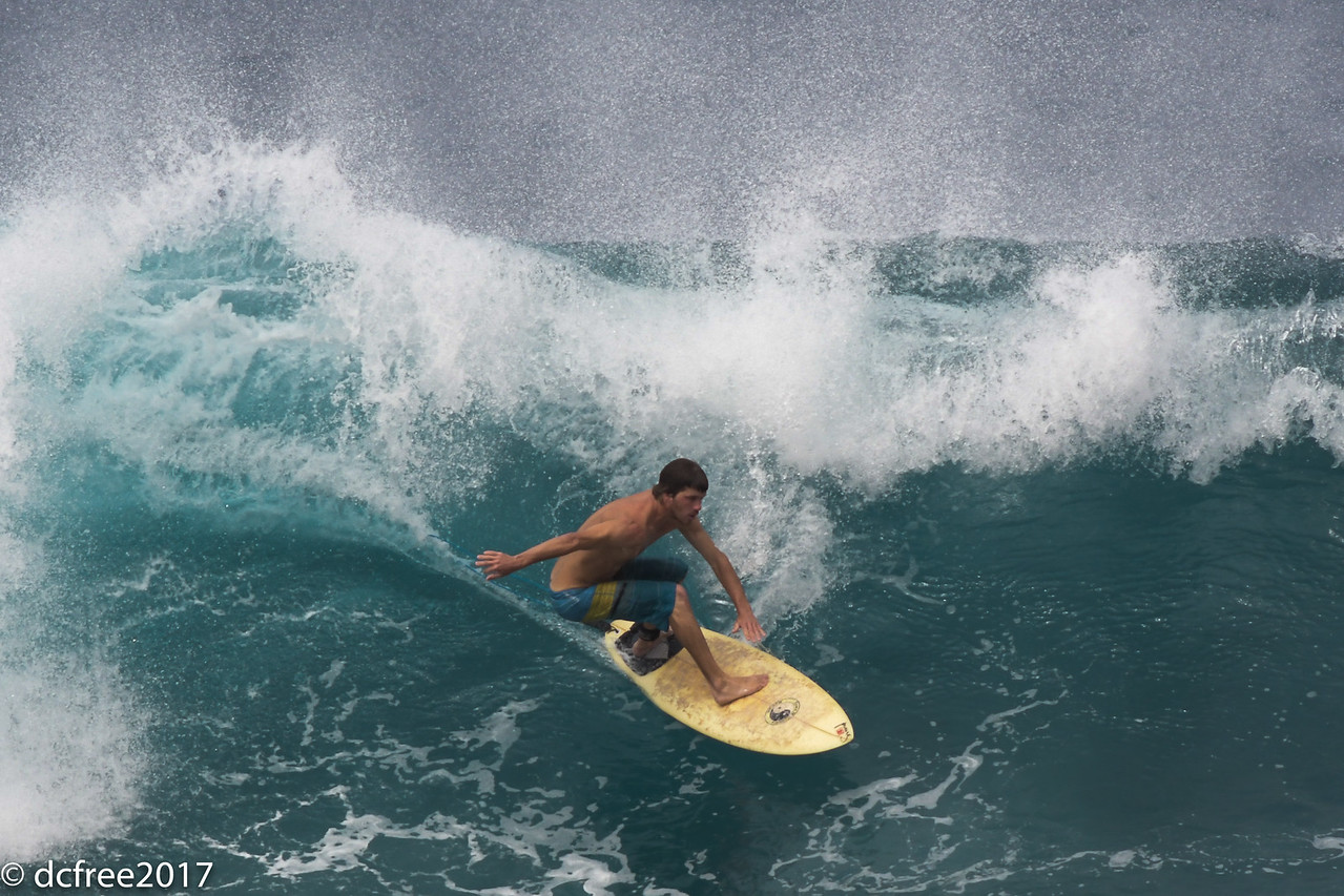 HOOKIPA SURFER 2