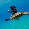 DAVE MCMURDEI SHOOTING A GREEN SEA TURTLE