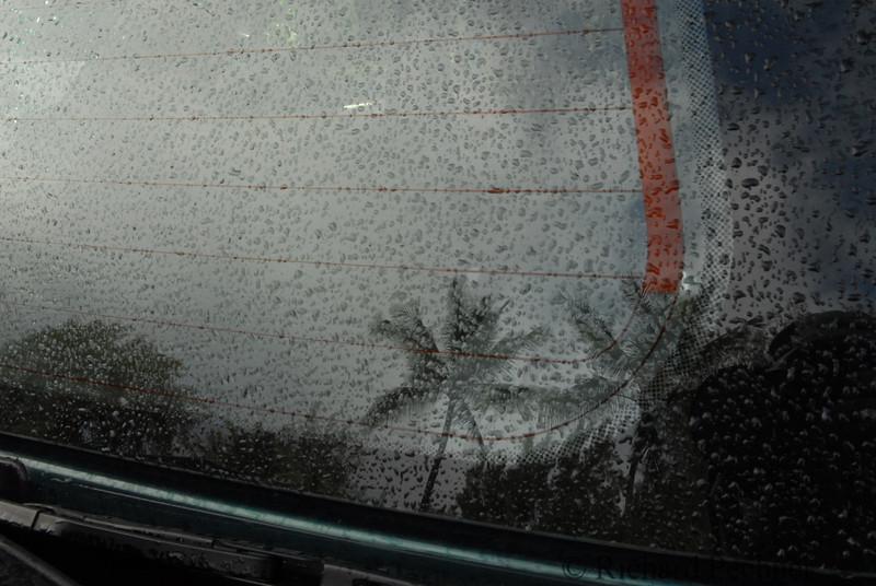 Raindrops in Paridise
