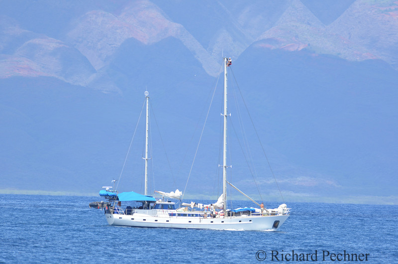 """""""Evohe"""" support boat follows vakas with crew member high on the main mast."""