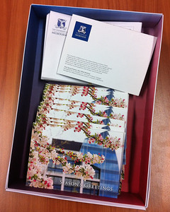 "Unimelb decides to use my ""Pink Flowers"" photo for the 2011 greeting cards."