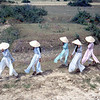 Vietnamese Ladies in Aou Dai Dresses-Da Nang 1966