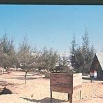 "1966 Camp Adenir ""Urinal"""