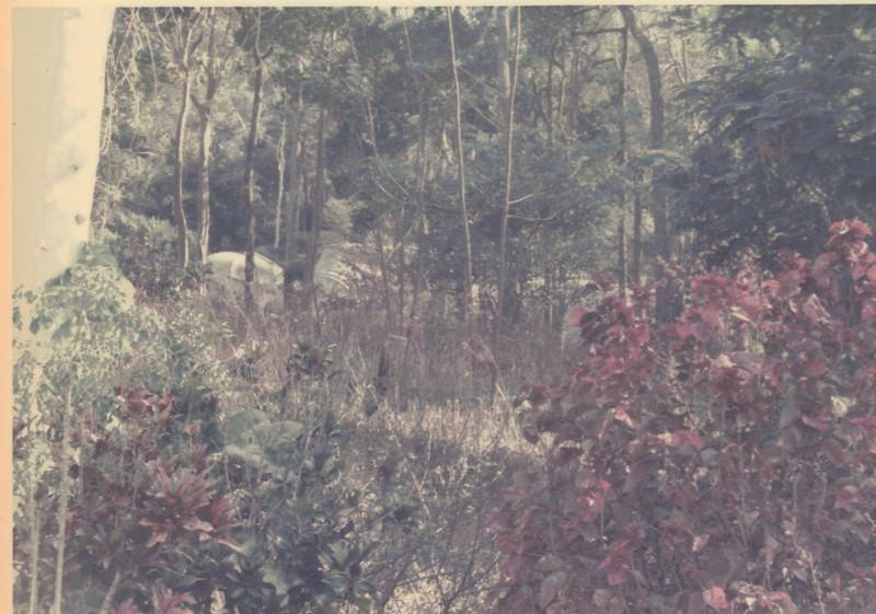 On Patrol February 1972