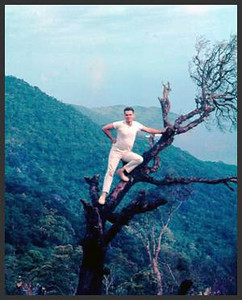 This pic taken of me at 21 in my civvies' on Monkey Mountain, Danang 1967. The tree is dead and overhanging the rocks several hundred feet below. My brain had to be dead also to pull a dumb stunt like this.