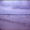 8 straight days of Monsoon rains