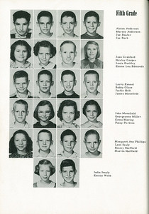 1952-0036