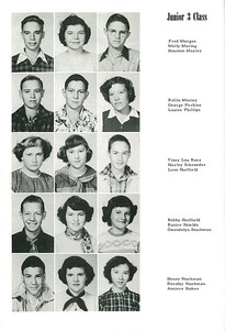 1952-0029