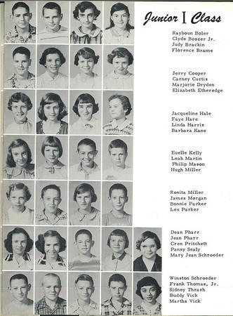 1955-0019