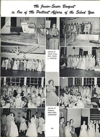1955-0029