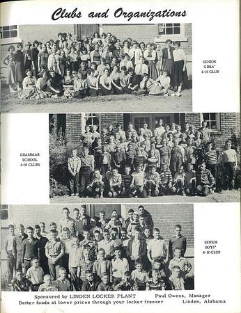 1956-0038