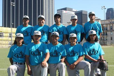 Mr. Castro's Baseball Team