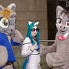 MCM Manchester Comic Con 2016, Cosplay, Cosplayers, Male, Female, My Little Pony, Comics, TV Series, Furr Suits, Pony, Cat Ears, Top, Pants, Wig, Sun Glasses, Grey, Brown, Black, Blue, Green, Pink White