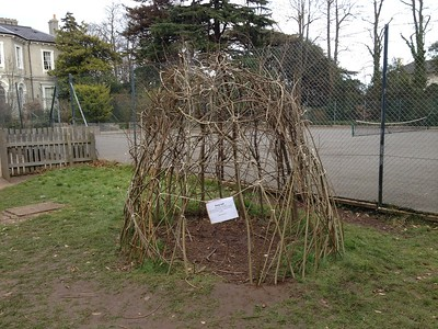 Willow Hut