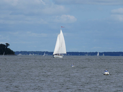 sailboat on the bay, seen from the Annapolis waterfront