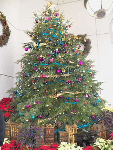 Christmas tree at the US Botanical Garden