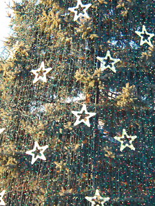 ornaments on the National Christmas tree