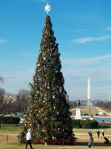 Washington DC Christmas displays 2013