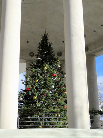 Christmas tree at the Embassy of Canada