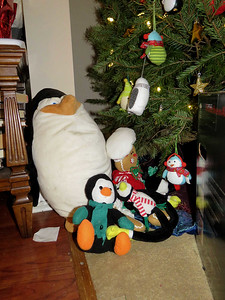 stuffed penguins by the Christmas tree, 2018